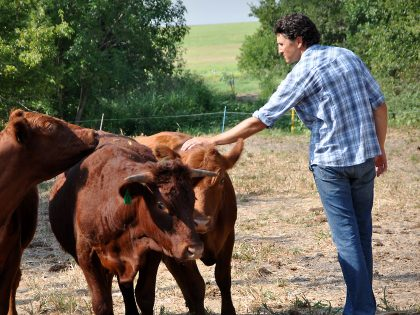 How Reintegrating Livestock and Restoring Soils Can Lead to More Resilient Farms