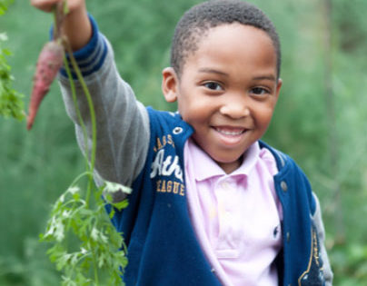 Farm to School Grantees' Growing Achievements