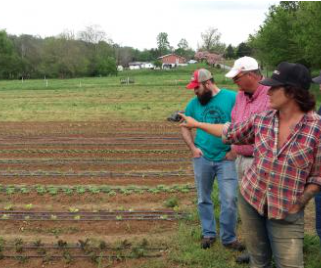 The Tennessee Beginning Farmer Program Seeks Mentors & Mentees