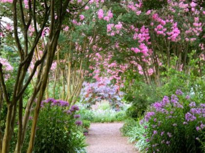 HIRING: Assistant Garden Manager – The Hermitage