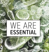 BLOG SERIES: We Are Essential